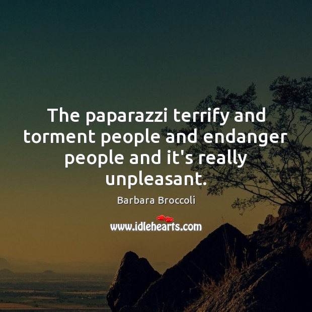 Image, The paparazzi terrify and torment people and endanger people and it's really unpleasant.