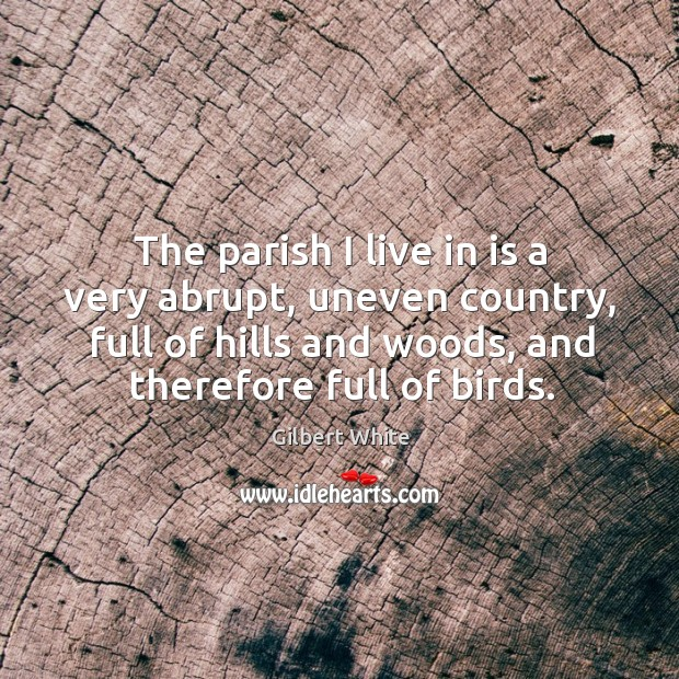 Image, The parish I live in is a very abrupt, uneven country, full of hills and woods, and therefore full of birds.