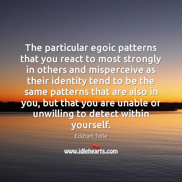 The particular egoic patterns that you react to most strongly in others Eckhart Tolle Picture Quote