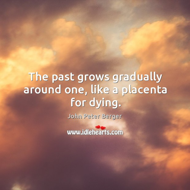 The past grows gradually around one, like a placenta for dying. Image