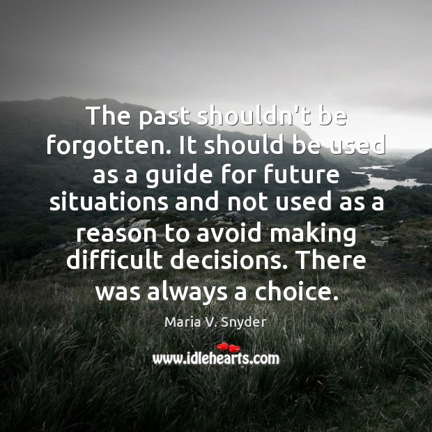 The past shouldn't be forgotten. It should be used as a guide Maria V. Snyder Picture Quote