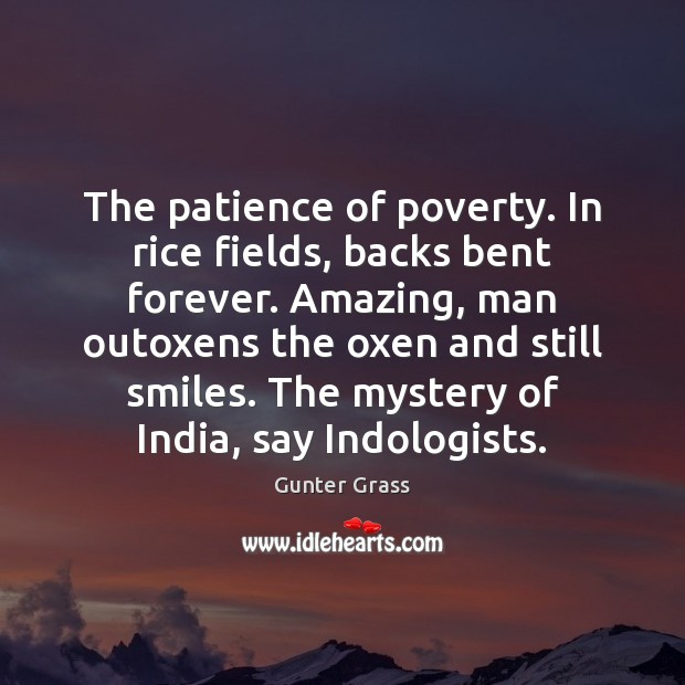 The patience of poverty. In rice fields, backs bent forever. Amazing, man Gunter Grass Picture Quote