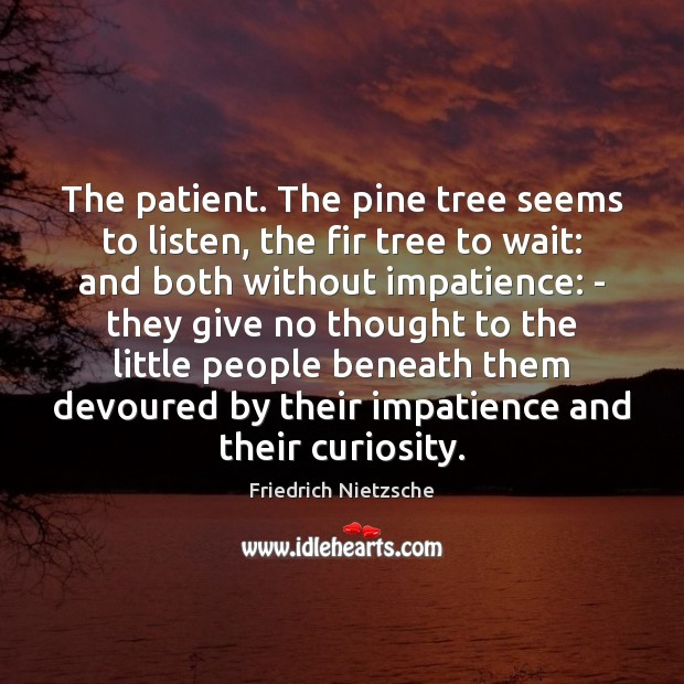 Image, The patient. The pine tree seems to listen, the fir tree to
