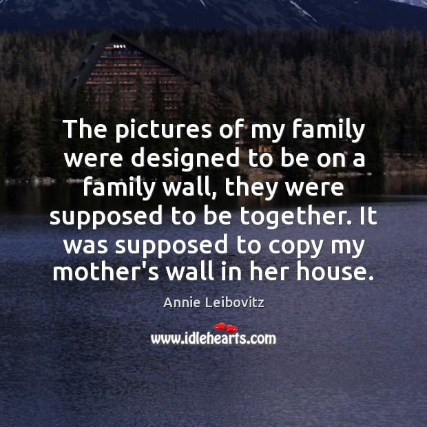 The pictures of my family were designed to be on a family Annie Leibovitz Picture Quote