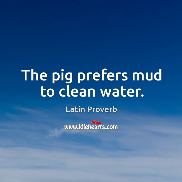 Image, The pig prefers mud to clean water.