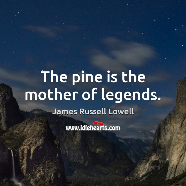The pine is the mother of legends. James Russell Lowell Picture Quote