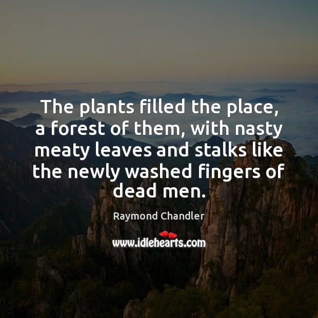The plants filled the place, a forest of them, with nasty meaty Raymond Chandler Picture Quote