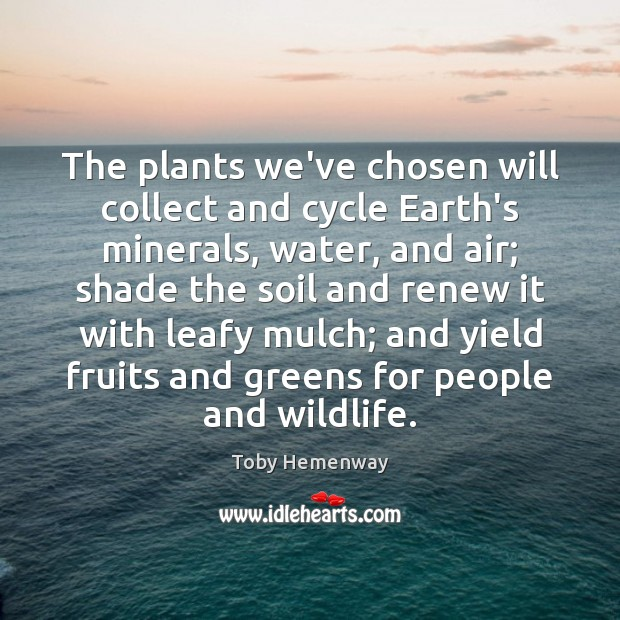 The plants we've chosen will collect and cycle Earth's minerals, water, and Toby Hemenway Picture Quote