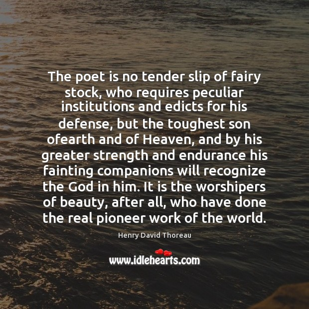 Image, The poet is no tender slip of fairy stock, who requires peculiar