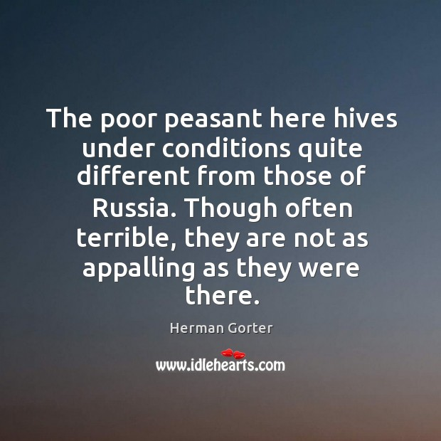 The poor peasant here hives under conditions quite different from those of russia. Herman Gorter Picture Quote