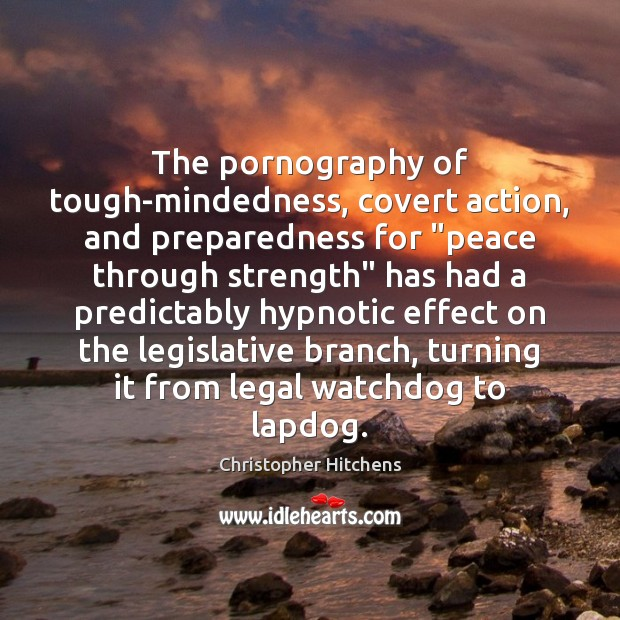 """The pornography of tough-mindedness, covert action, and preparedness for """"peace through strength"""" Image"""