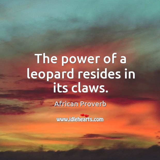Image, The power of a leopard resides in its claws.