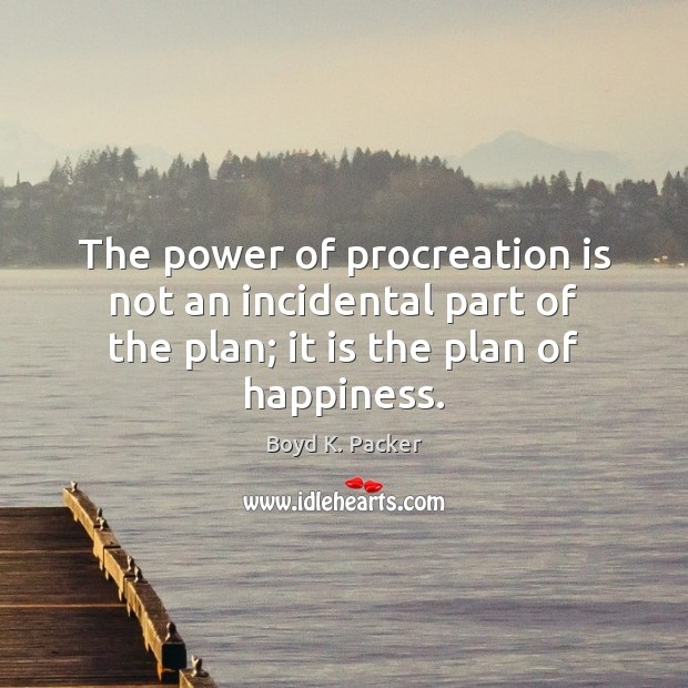 The power of procreation is not an incidental part of the plan; Boyd K. Packer Picture Quote