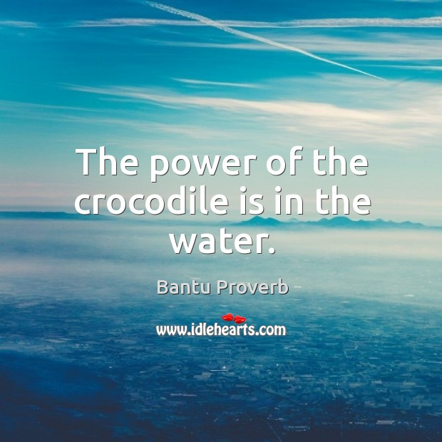The power of the crocodile is in the water. Bantu Proverbs Image