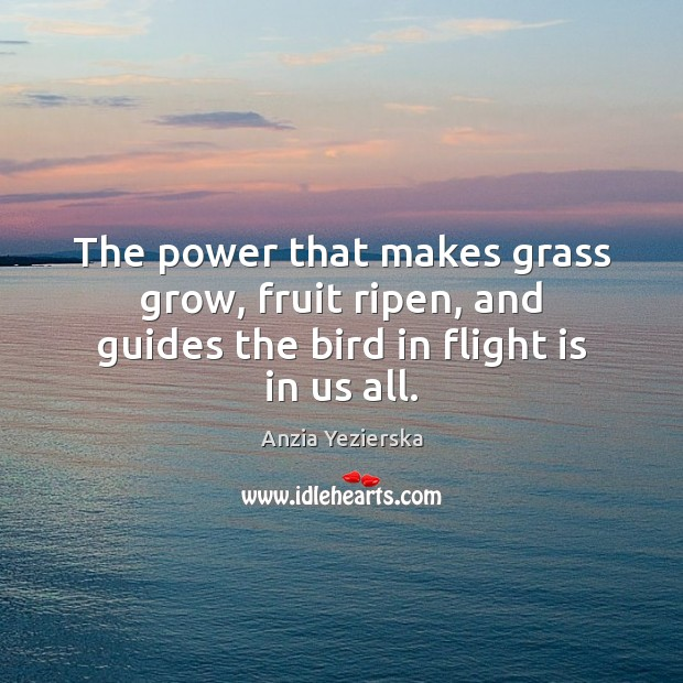 Image, The power that makes grass grow, fruit ripen, and guides the bird in flight is in us all.