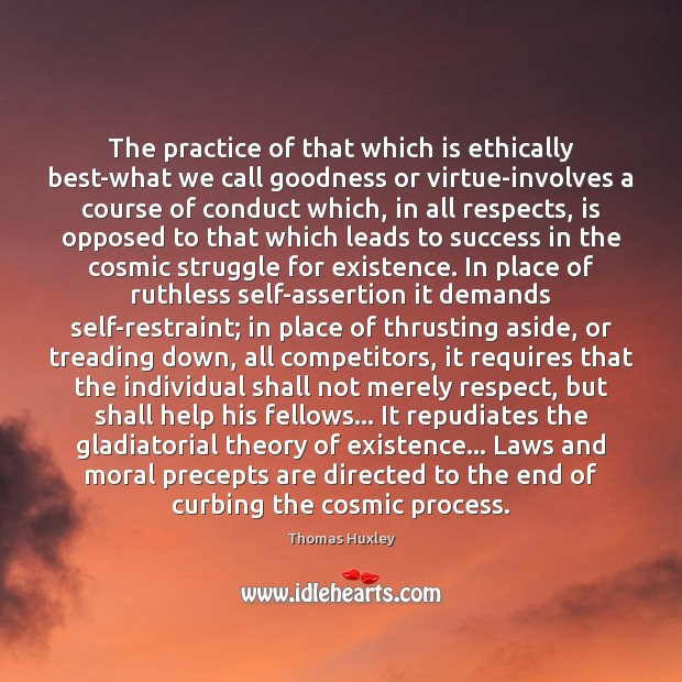 Image, The practice of that which is ethically best-what we call goodness or
