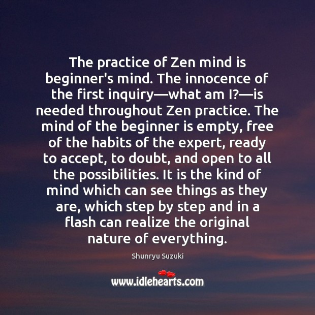 The practice of Zen mind is beginner's mind. The innocence of the Image