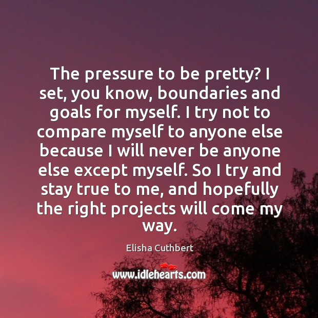 The pressure to be pretty? I set, you know, boundaries and goals for myself. Elisha Cuthbert Picture Quote