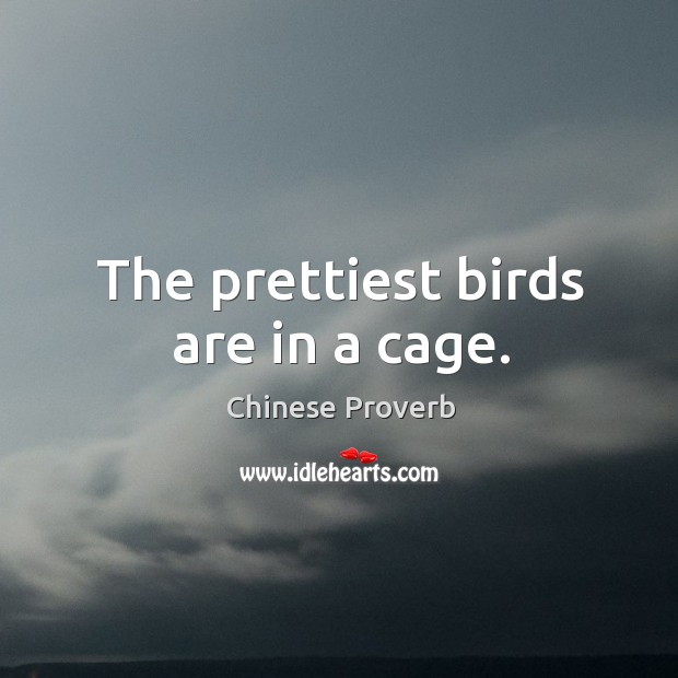 The prettiest birds are in a cage. Image