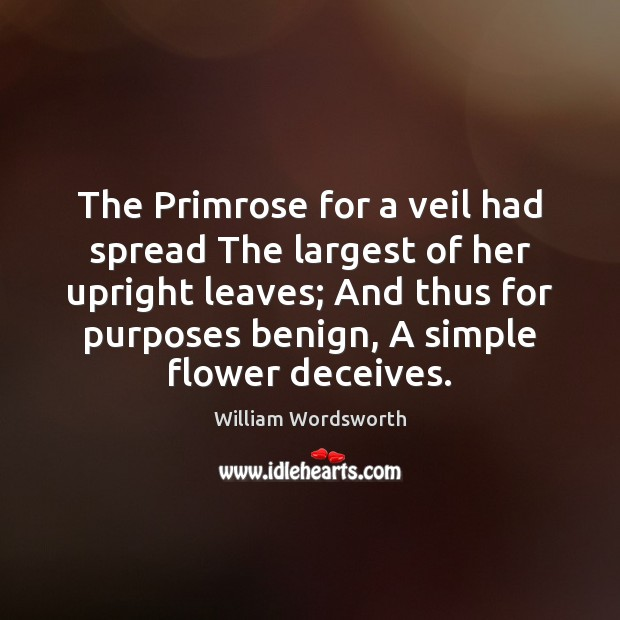 The Primrose for a veil had spread The largest of her upright William Wordsworth Picture Quote