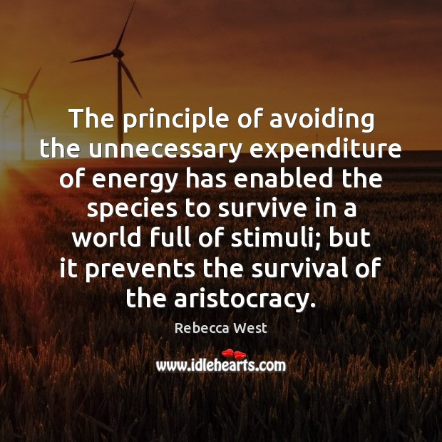 The principle of avoiding the unnecessary expenditure of energy has enabled the Rebecca West Picture Quote