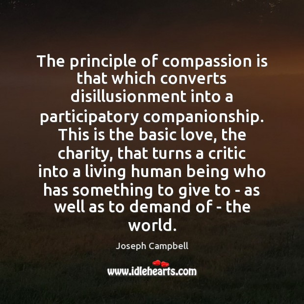 The principle of compassion is that which converts disillusionment into a participatory Image