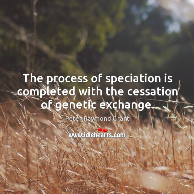 Image, The process of speciation is completed with the cessation of genetic exchange.