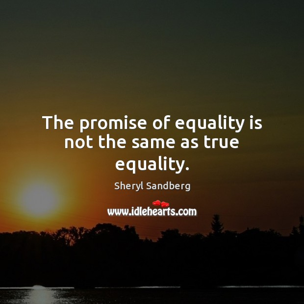 The promise of equality is not the same as true equality. Equality Quotes Image