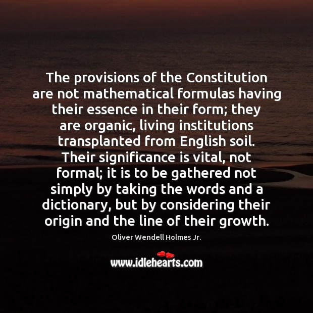 The provisions of the Constitution are not mathematical formulas having their essence Oliver Wendell Holmes Jr. Picture Quote