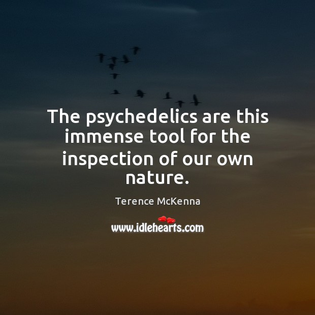 The psychedelics are this immense tool for the inspection of our own nature. Image