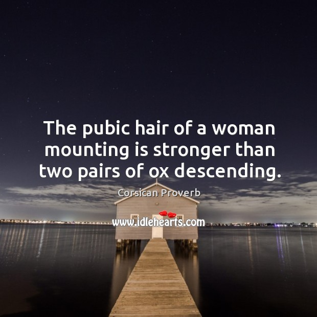 Image, The pubic hair of a woman mounting is stronger than two pairs of ox descending.