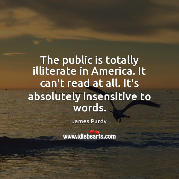 The public is totally illiterate in America. It can't read at all. Image