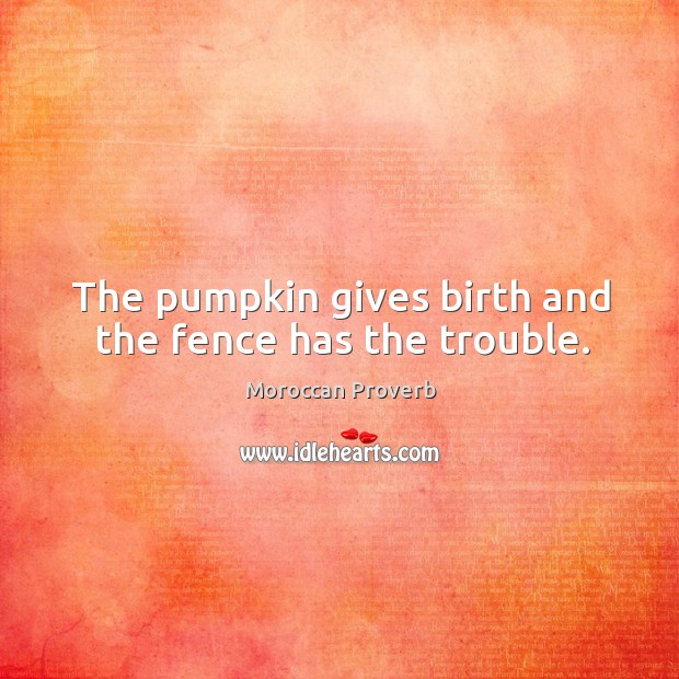 The pumpkin gives birth and the fence has the trouble. Moroccan Proverbs Image