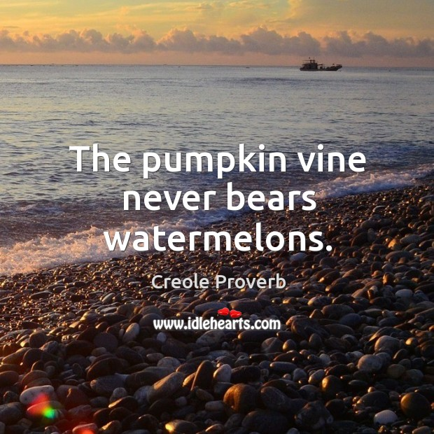 The pumpkin vine never bears watermelons. Creole Proverbs Image