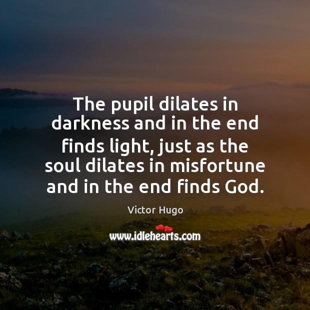 The pupil dilates in darkness and in the end finds light, just Image