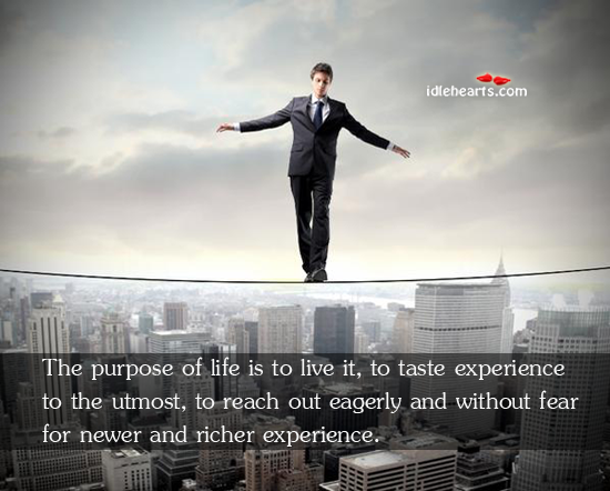 The Purpose Of Life Is To Live It, To Taste Experience To…