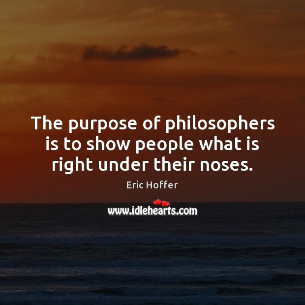 Image, The purpose of philosophers is to show people what is right under their noses.
