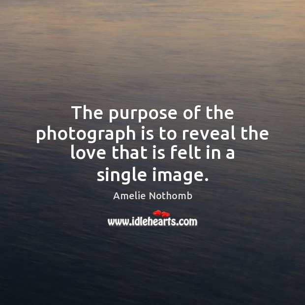 Image, The purpose of the photograph is to reveal the love that is felt in a single image.