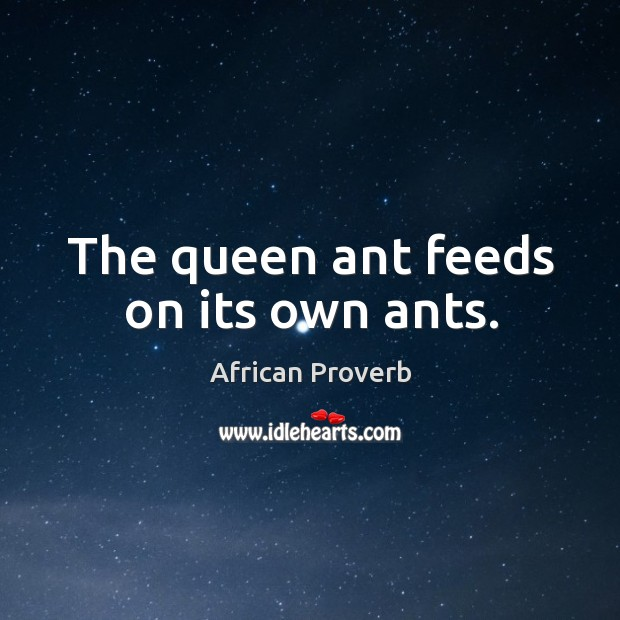 Image, The queen ant feeds on its own ants.