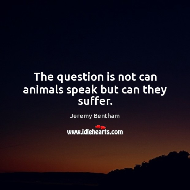 The question is not can animals speak but can they suffer. Image