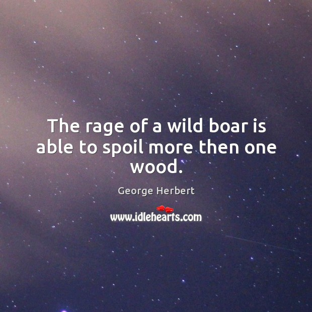 The rage of a wild boar is able to spoil more then one wood. Image