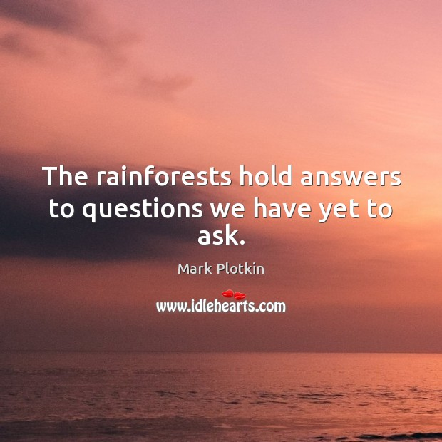 The rainforests hold answers to questions we have yet to ask. Image