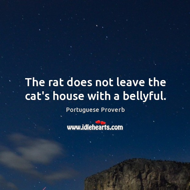 Image, The rat does not leave the cat's house with a bellyful.
