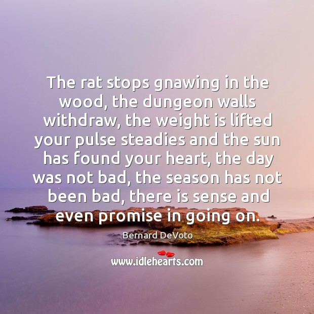 The rat stops gnawing in the wood, the dungeon walls withdraw, the weight is lifted Image