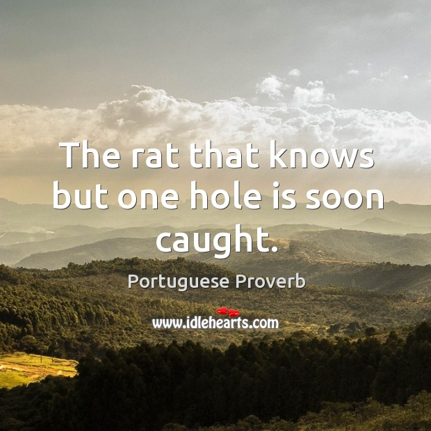 Image, The rat that knows but one hole is soon caught.