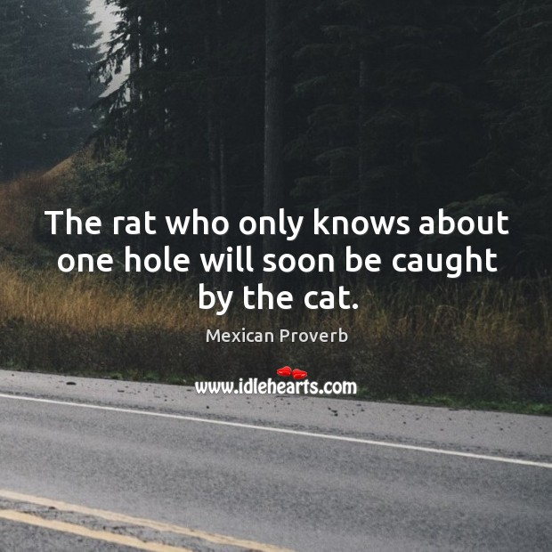 Image, The rat who only knows about one hole will soon be caught by the cat.
