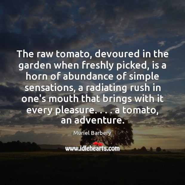 The raw tomato, devoured in the garden when freshly picked, is a Muriel Barbery Picture Quote