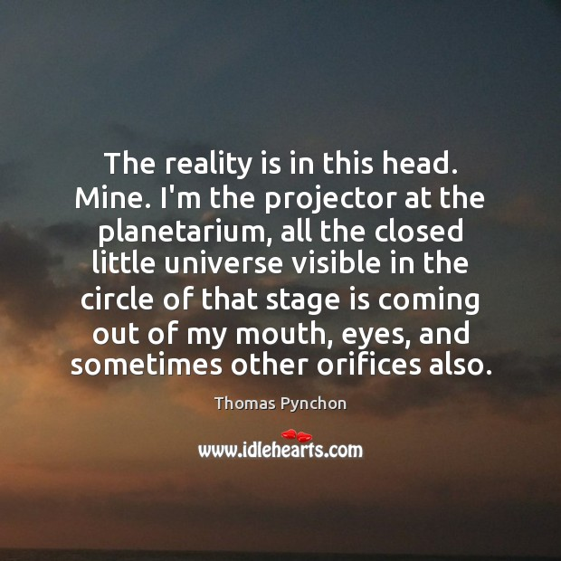 The reality is in this head. Mine. I'm the projector at the Image