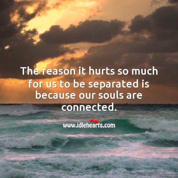 The reason it hurts so much for us to be separated is because our souls are connected. Love Hurts Quotes Image