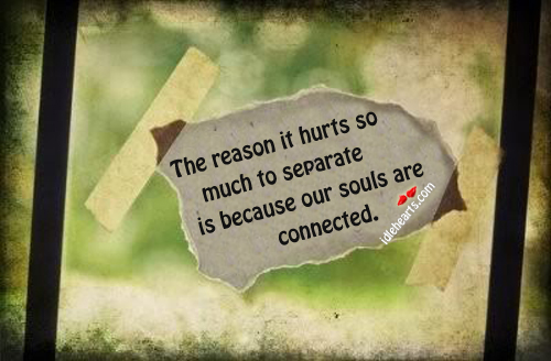 Reason it hurts so much to separate is because souls are connected Image